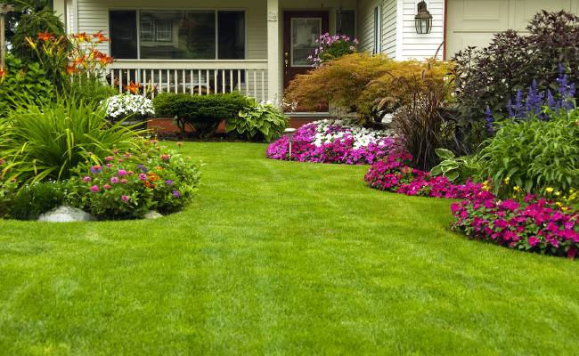 Lawn and Landscaping with flower beds