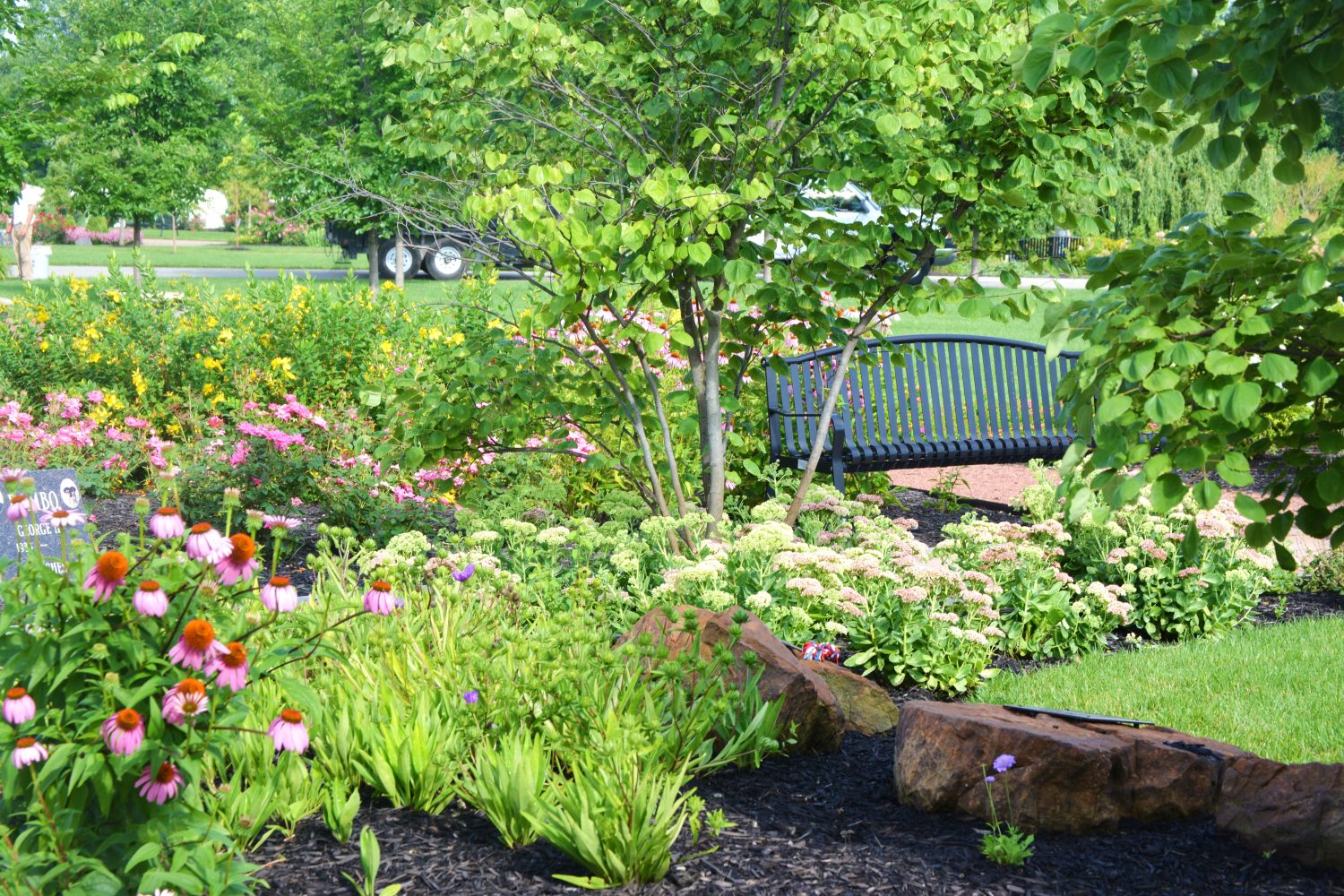 Park Scene with Annual Flowers
