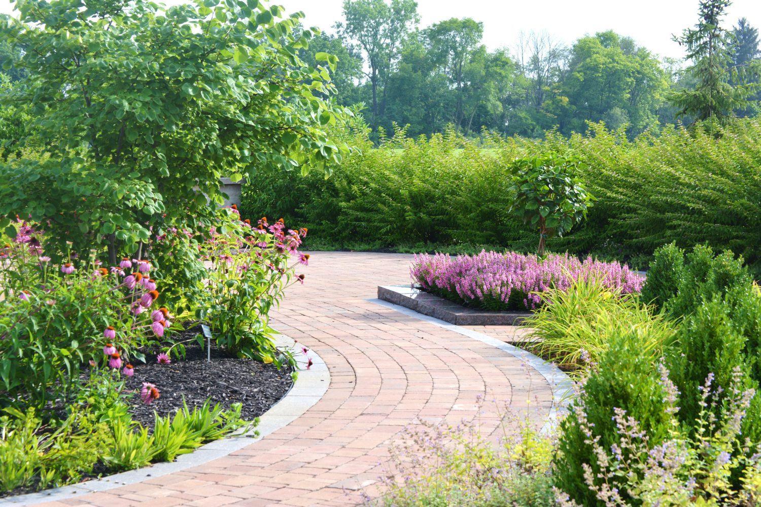 Brick walkway and annual flowers
