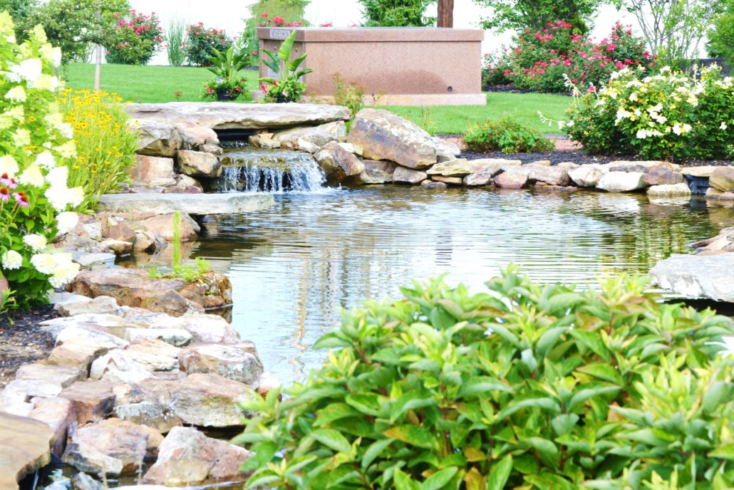 Waterfall and professional pond by Plant Studio Landscaping