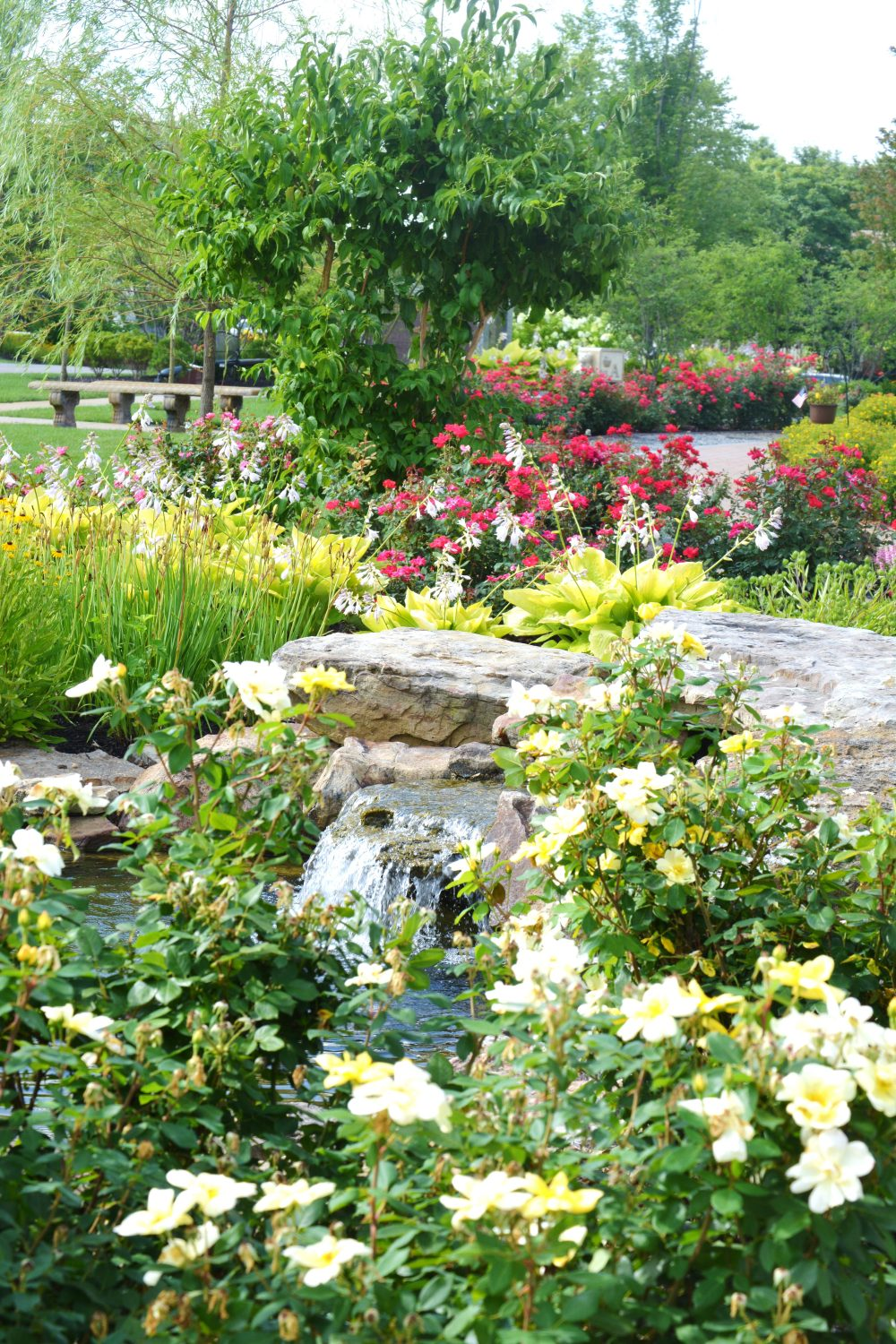 Annuals surround a waterfall water feature