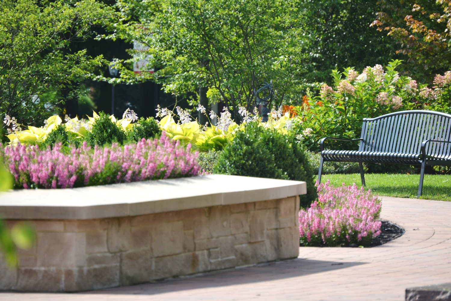 Outdoor park scene filled with annuals