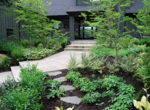 Stepping stones, landscaping and paver